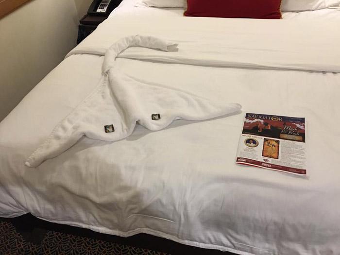 Um dos bichos de toalha que o camareiro fez