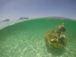 Minnie submersa em Castaway Cay, a ilha da Disney