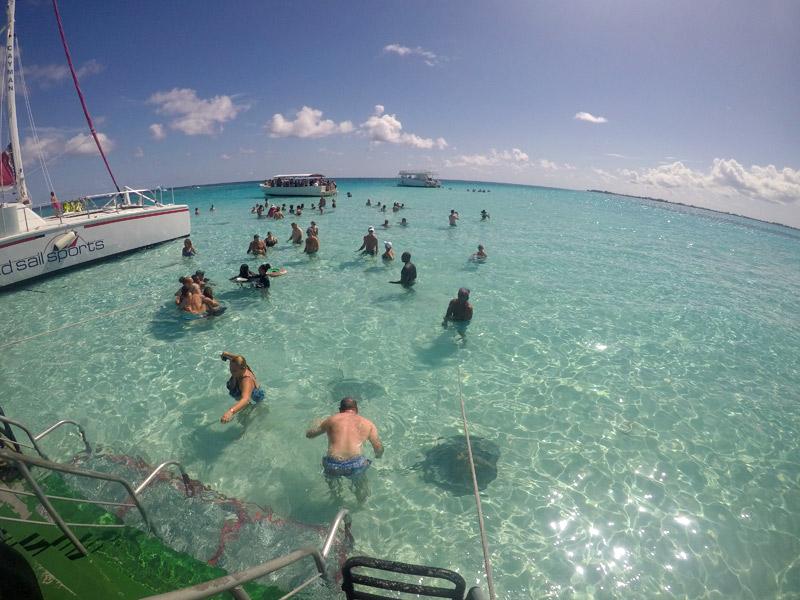 passeios nas Ilhas Cayman: arraias em Stingray City