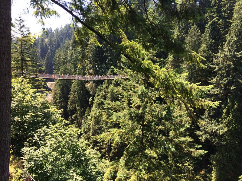 Roteiro em Vancouver: Uma outra vista de Capilano Bridge. Foto: Mirella Mathiesen